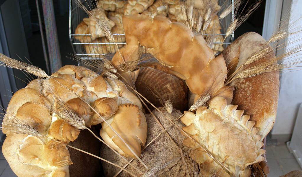 festa del pane di maiolo