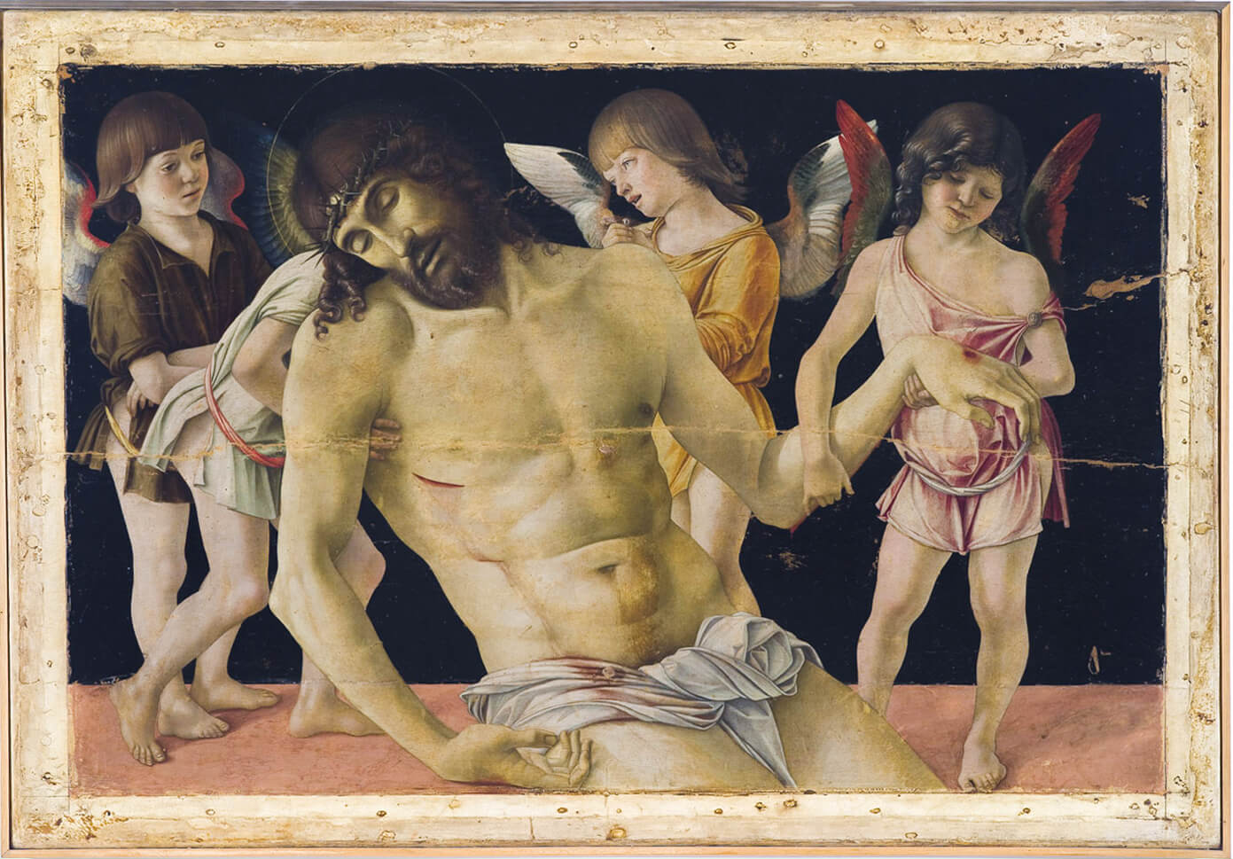 bellini cristo morto sorretto dagli angeli al museo della citta rimini