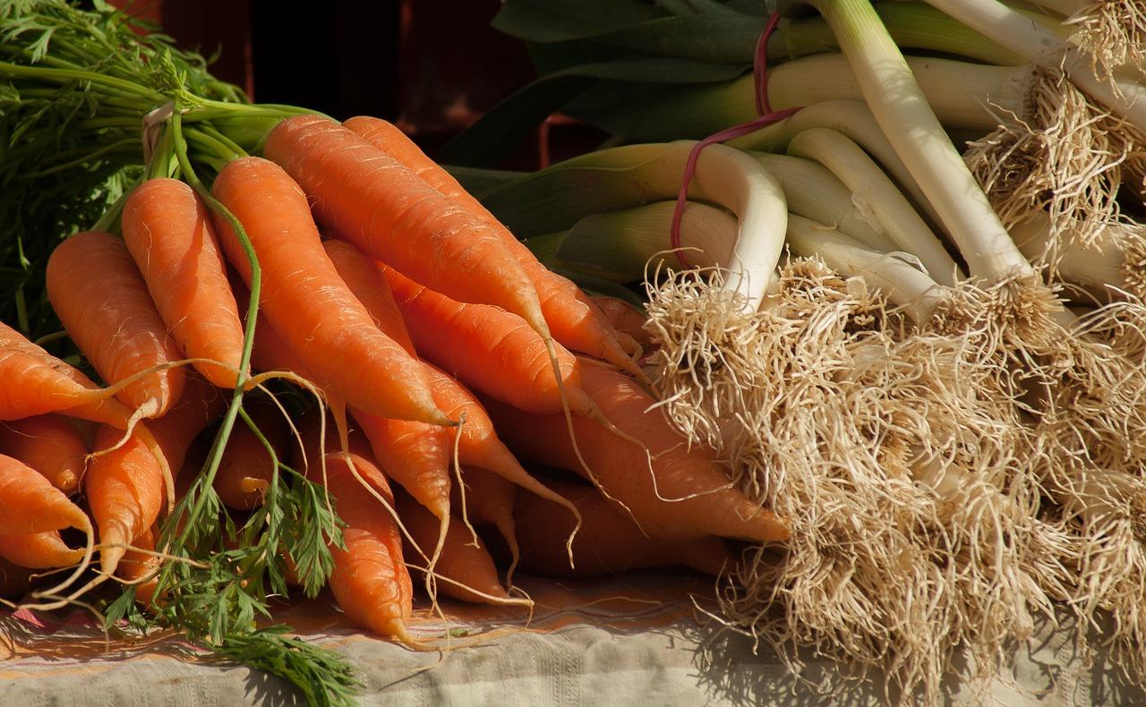 carote mille orti per la città