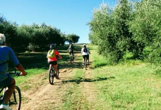 Bike Tour: scoprire l'entroterra in sella ad una City Bike thumb